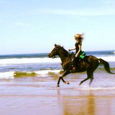 HorseFreedom
